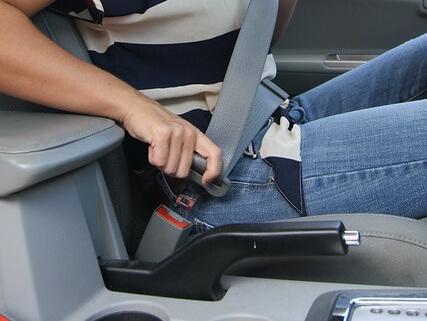 seat-belt Cropped